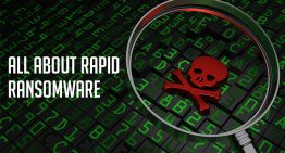 all about rapid ransomware