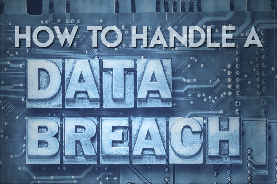 handle a data breach
