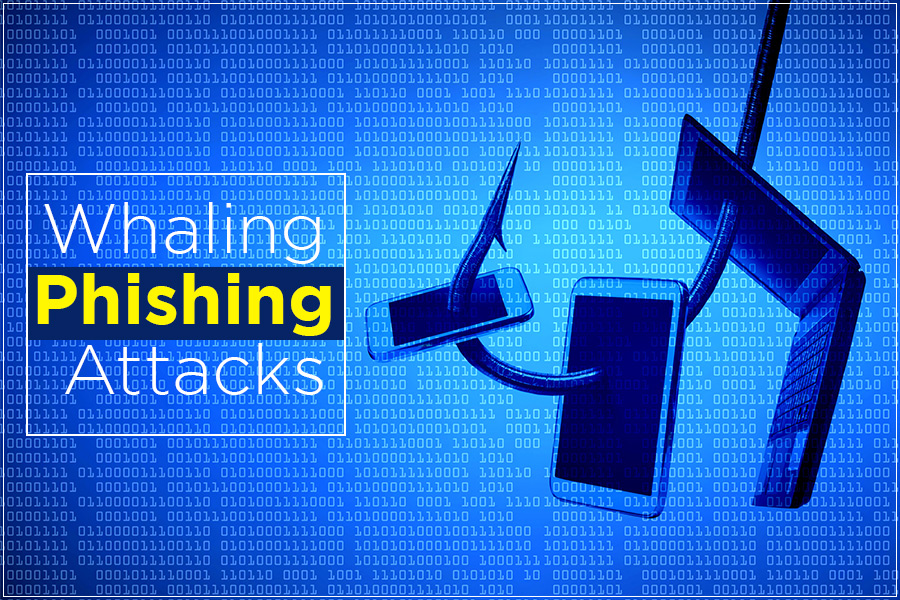 Whalong Phishing attacks