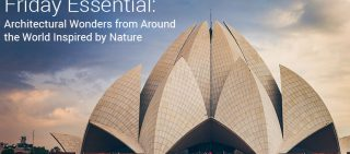 Biomimicry Architecture Inspired By Nature