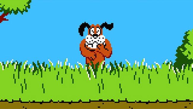 Duck Hunt Dog