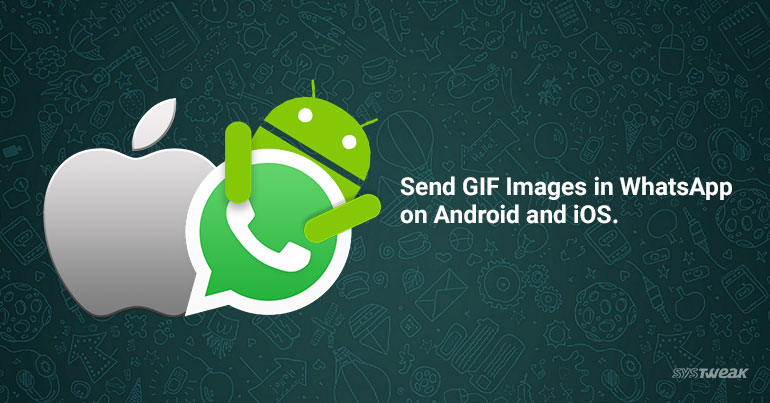 How to Send GIF Images in WhatsApp on Android and iOS
