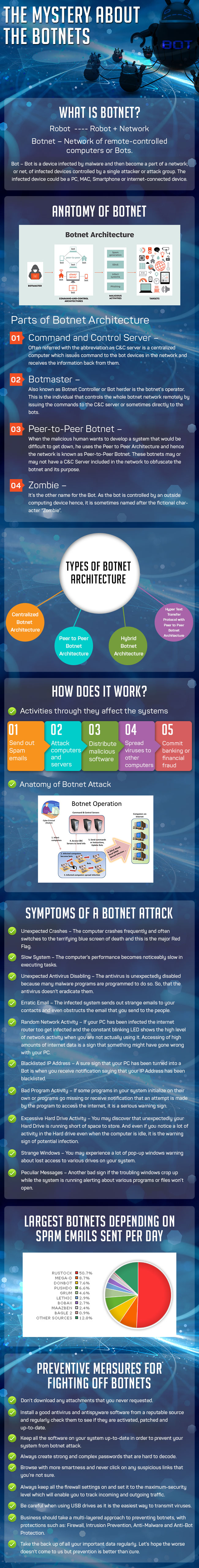 Mystery About the Botnets Infographic