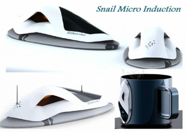 Snail_Micro_induction