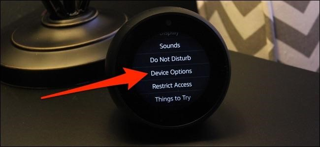 device option echo spot