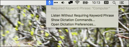 dictation command