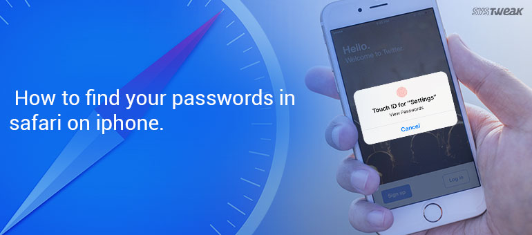 how to find your Apple id or email password on your iPhone