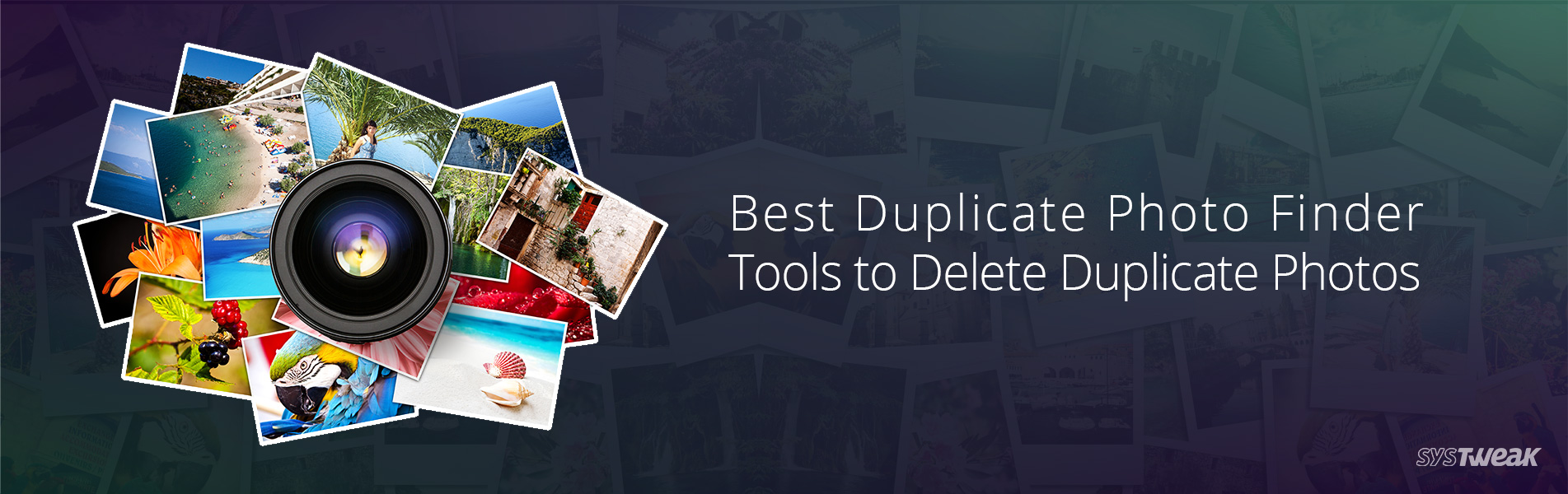 5 Best Duplicate Photo Finder & Remover Tools to Delete