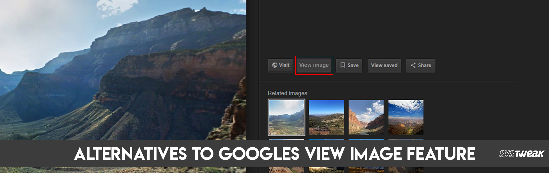 Google Removes 'View Image' Feature, Here Are Four Alternatives You Can Use