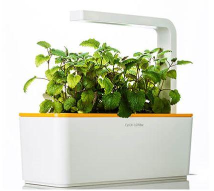 Smart hub garden