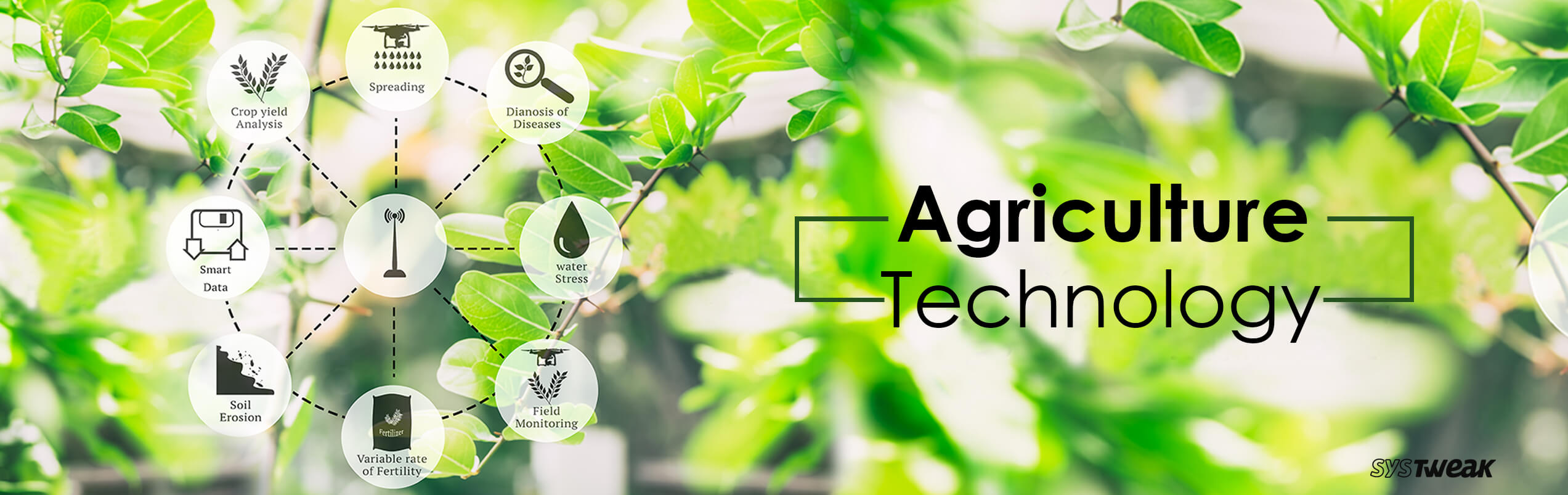 Technology in Agriculture: Feeding the Future