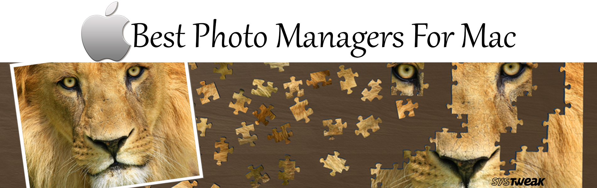 5 Best Photo Management Apps For Mac In 2018