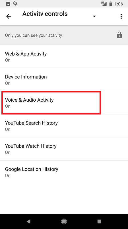 voice and audio in google