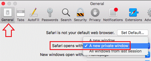 How To Automatically Start Browser in Incognito Mode for internet explorer for apple safari