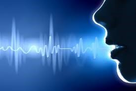 Voice Recognition System