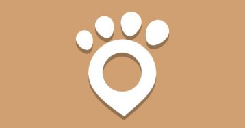 The Best GPS Tracker for Pets