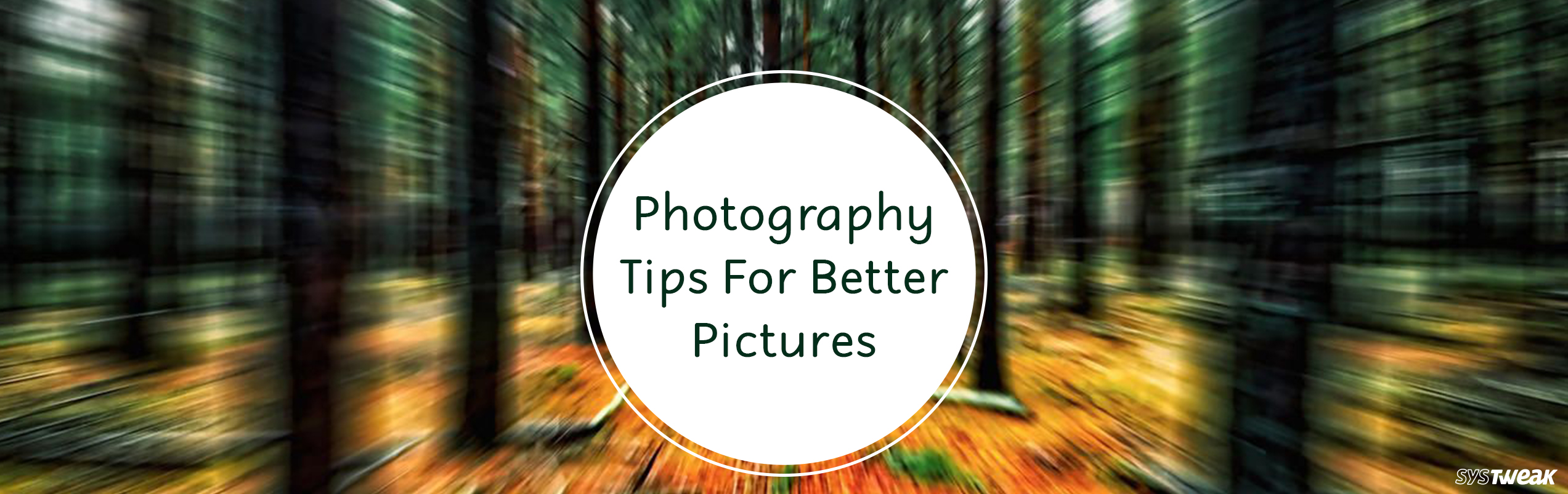 Photography Tips For Beginners To Improve The Picture Quality