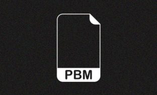 Everything You Need To Know About PBM File?