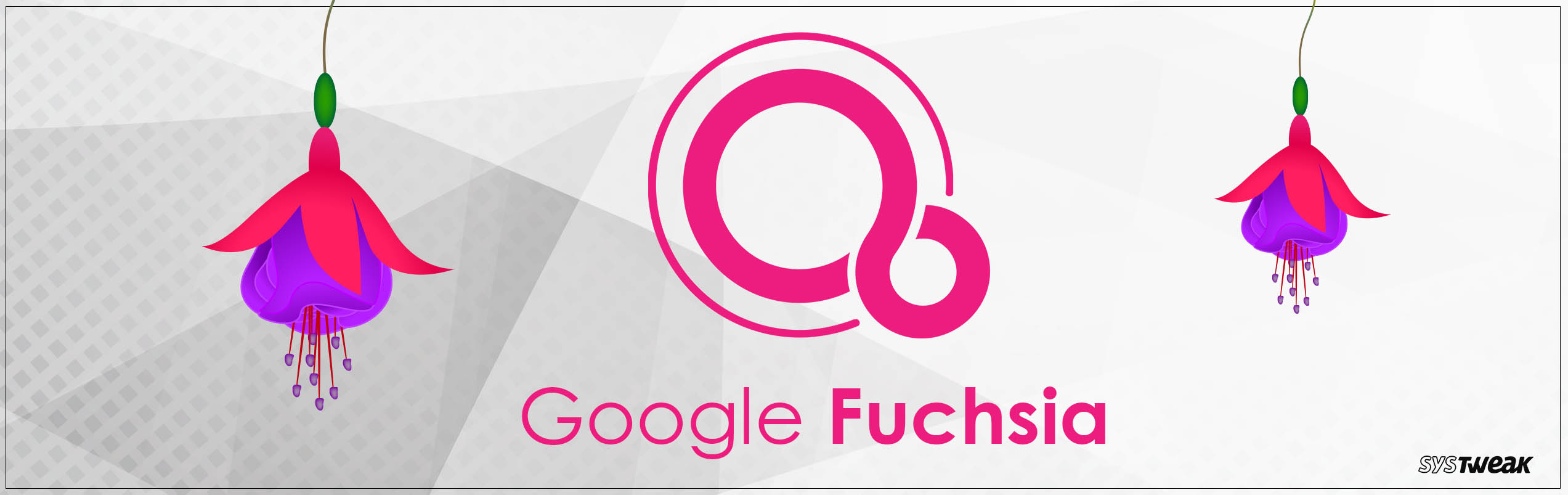 Google Fuchsia: Successor To Android?