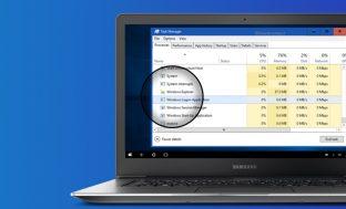 What is Windows Logon Application?