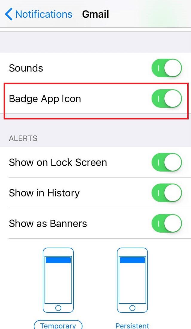 Badge app icon iPhone