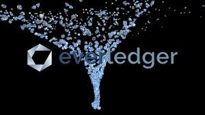 EVERLEDGER