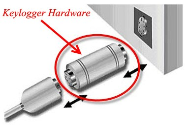 Examine the hardware