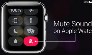 How To Mute Sounds On The Apple Watch