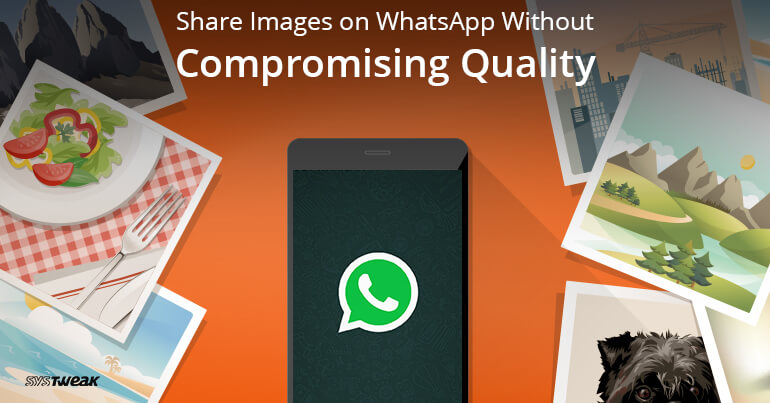How To Share Images On WhatsApp Without Compromising Quality