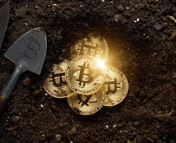gold bitcoin form
