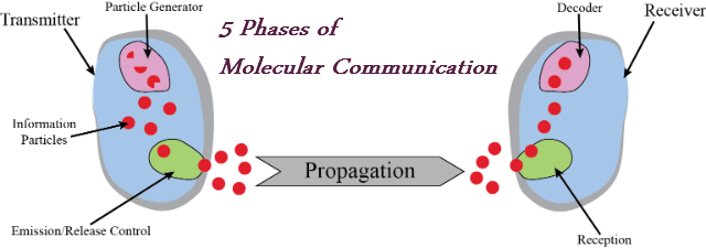 molecular_architecture