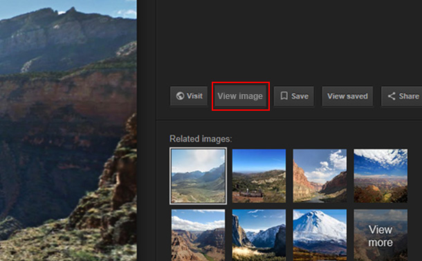 4 Best Alternatives of Google Image Search