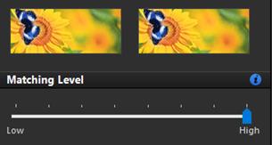 high matching level duplicate photos