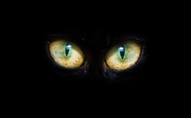 Friday The 13th Special: Terrorizing Sci-Fi Horror Classics