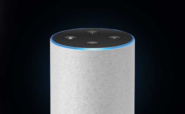 How To Listen To And Delete Everything Your Amazon Echo Has Recorded?
