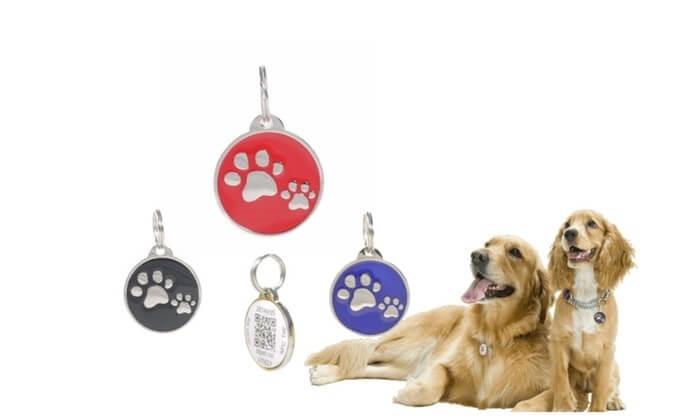 Paw-Prints-ID-QR-Smart-GPS-Pet-Collar