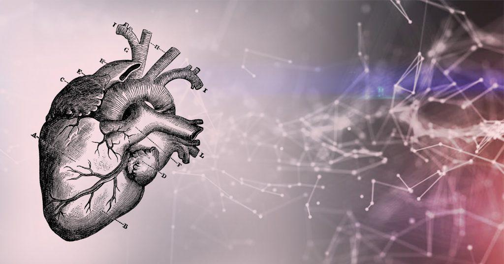 Transform Cardiac Healthcare