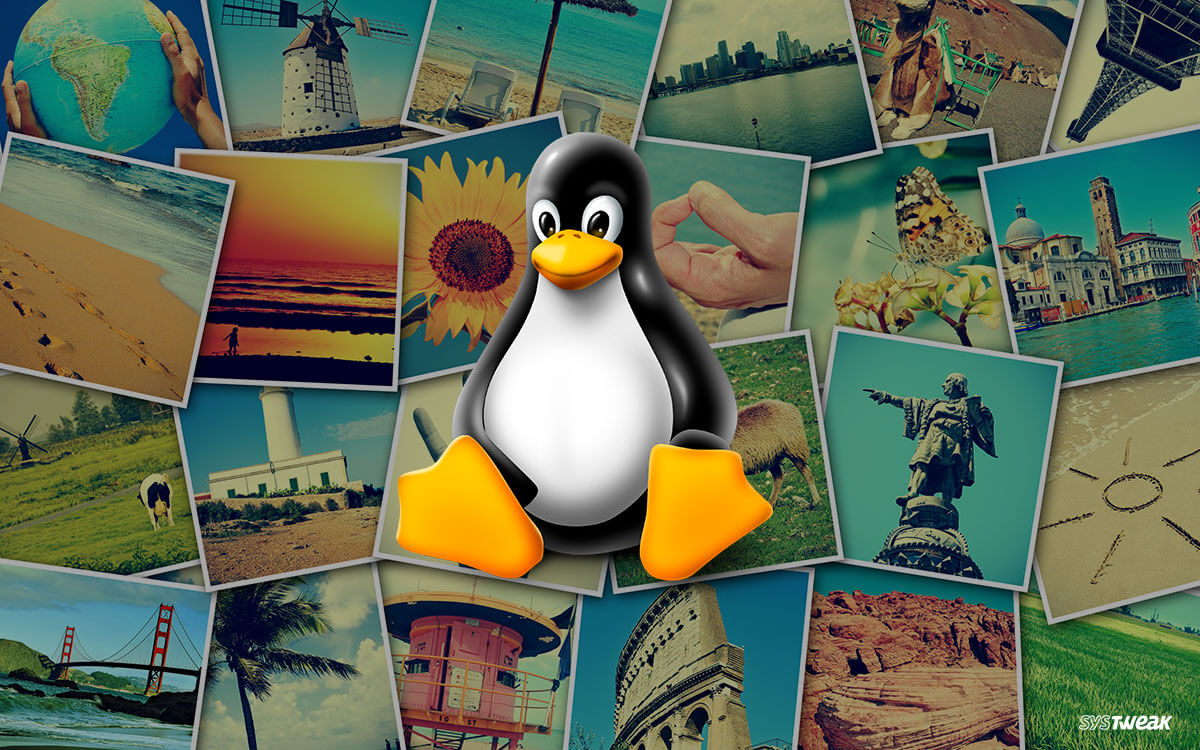 Top 7 Photo Management Tools for Linux
