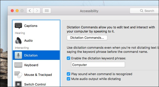 Enable Dictation Commands