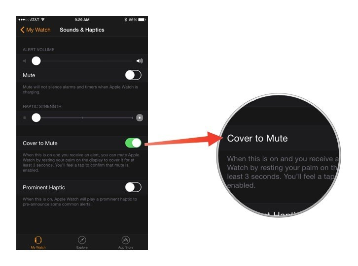 mute-alerts-with-your-palm-apple-watch