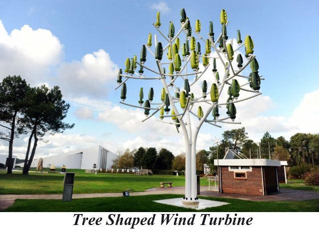 tree_shape